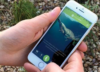 platypus-spot-app