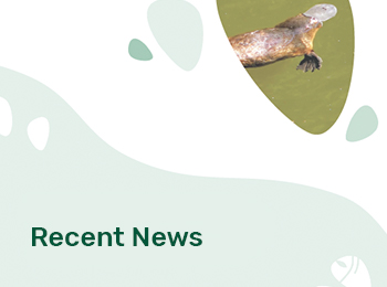 resources-latest-news