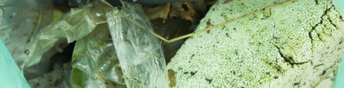 A bag of polystyrene and plastic litter