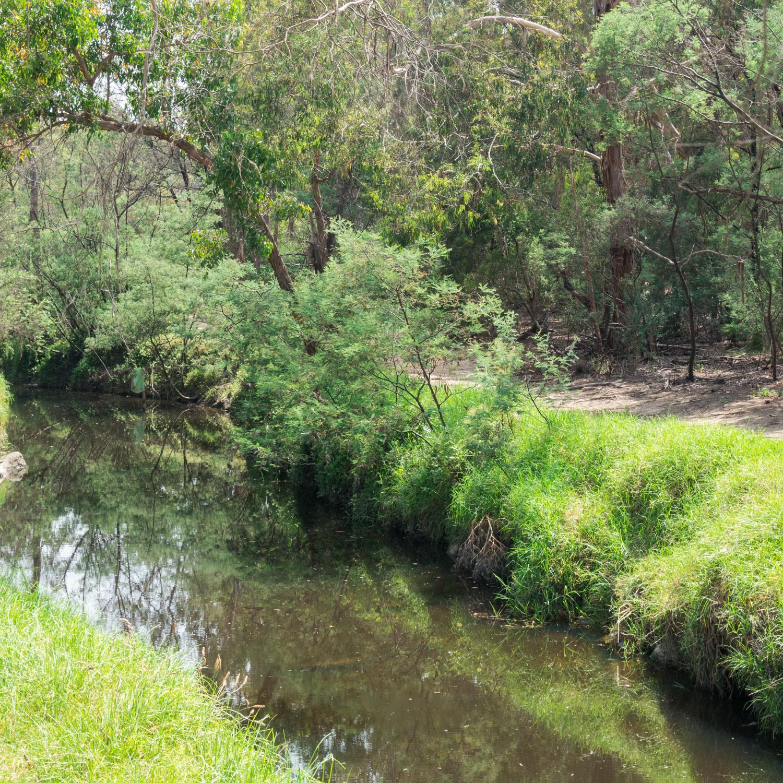 Gardiners Creek